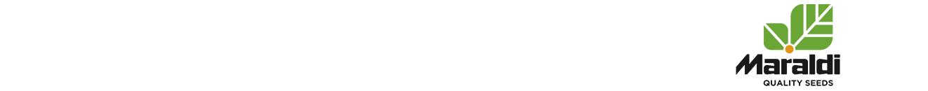 MARALDI_logo_full